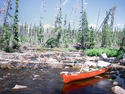 Kopka River