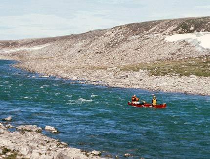 Macfarlane River