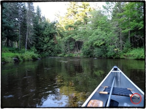 Photo courtesy Scott Oeth, Bois Brule River Wisconsin